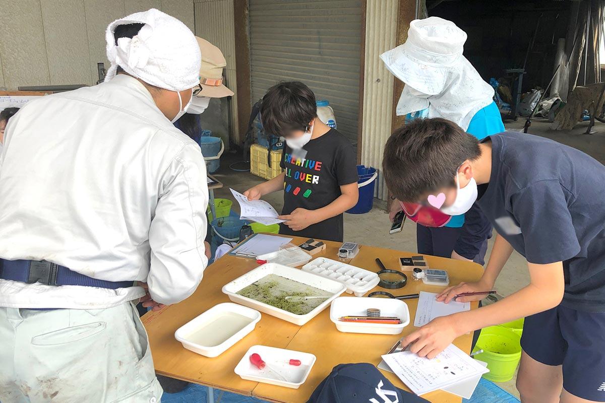 虫の特徴を答えていくと虫の名前が分かる図鑑を使いながら観察記録を付けています